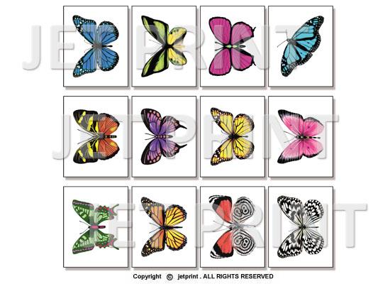 紋身, 紋身貼, 紋身貼紙, 客制化, 貼紙, 裝飾, 金屬紋身, 彩色紋身, 黑色紋身, 蝴蝶